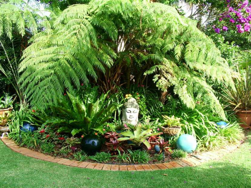 Small Backyard Landscaping Ideas Brisbane : Small tropical theme home garden design ideas