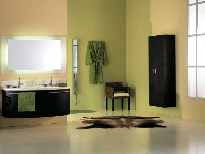 Bathroom Design With Green Paint Color