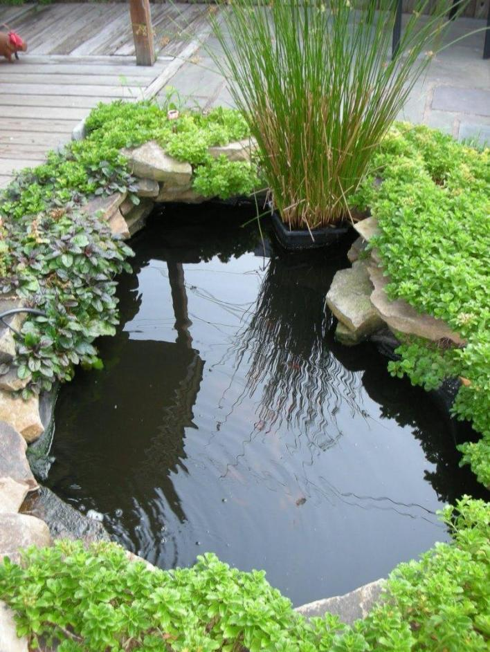 Tips to make minimalist fish pond design 4 home ideas for Garden table fish pond