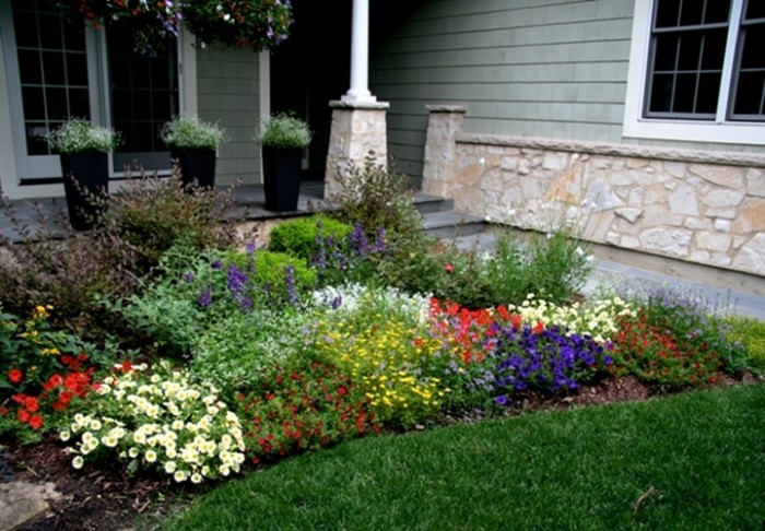 Colorful flower for front home garden 4 home ideas for Colorful front yard landscaping