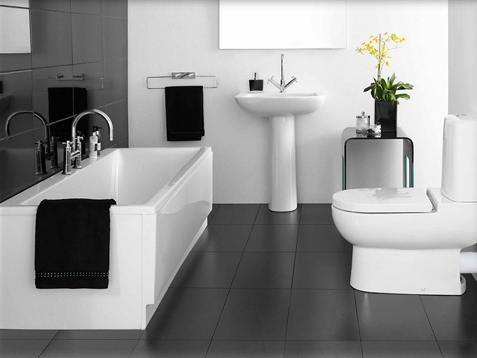 Elegant Black And White Bathroom Paint