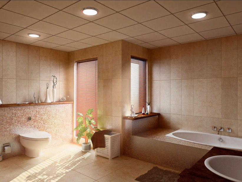 Elegant Color For Relaxing Bathroom Image