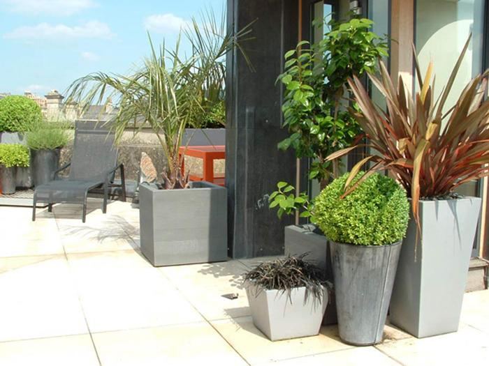 Elegant Pot Plants Design For Home