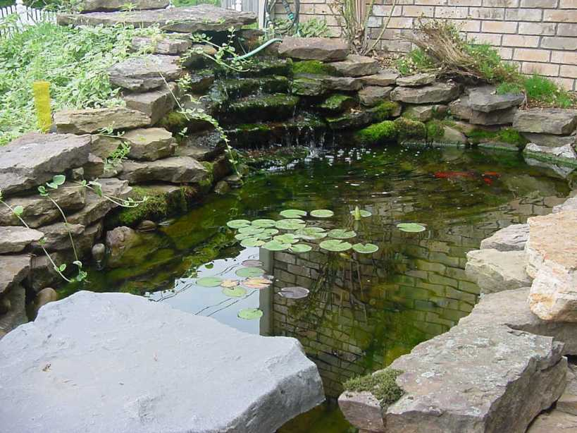 Fish Pond Design With Natural Stone