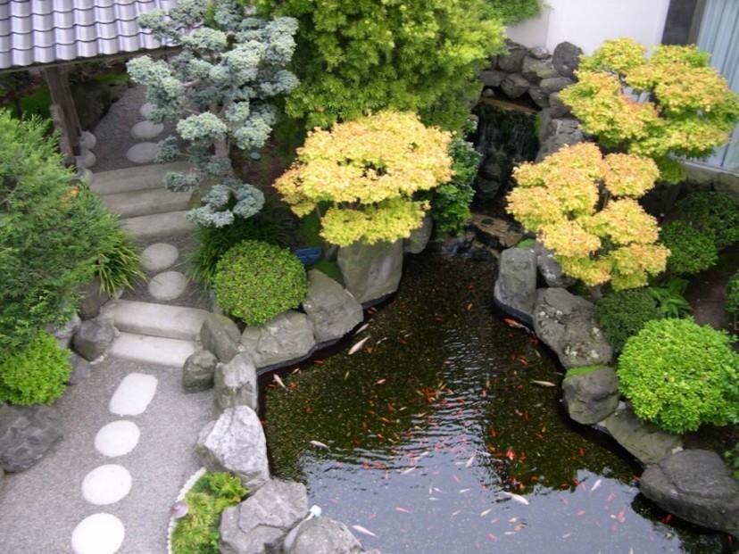 Fish Pond Idea For Home Garden