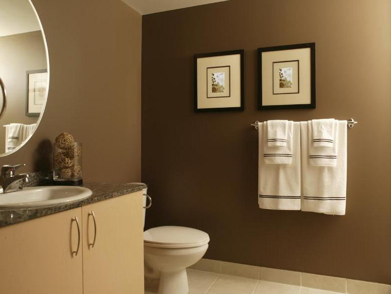 Luxury Brown Color For Minimalist Bathroom