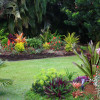 Minimalist Tropical Garden Design Idea Image