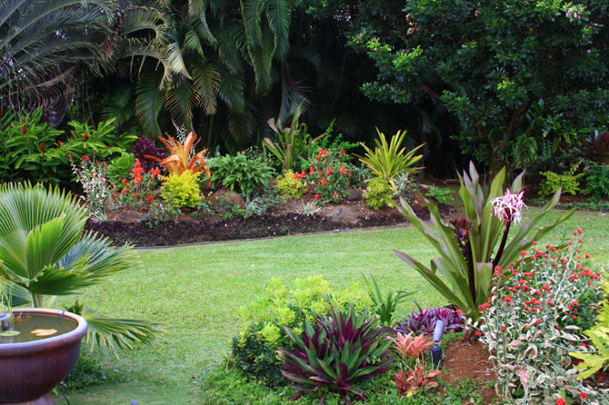 minimalist tropical garden design idea image - Garden Design Tropical