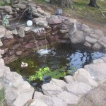 Natural Fish Pond Idea For House Garden