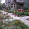 Simple American Front Home Garden Photo