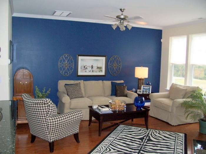 Simple Blue And White Home Paint