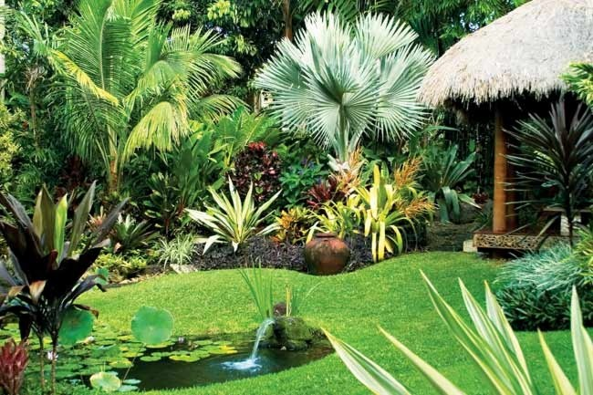 Simple Home Tropical Garden Design Layout