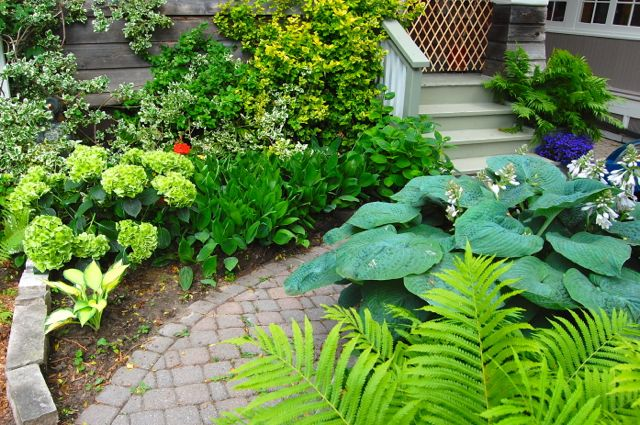 Beautiful small gardens images for Small beautiful gardens ideas
