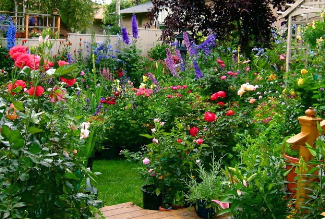 ... Home Garden Fresh Flowers Idea For Minimalist Garden ...