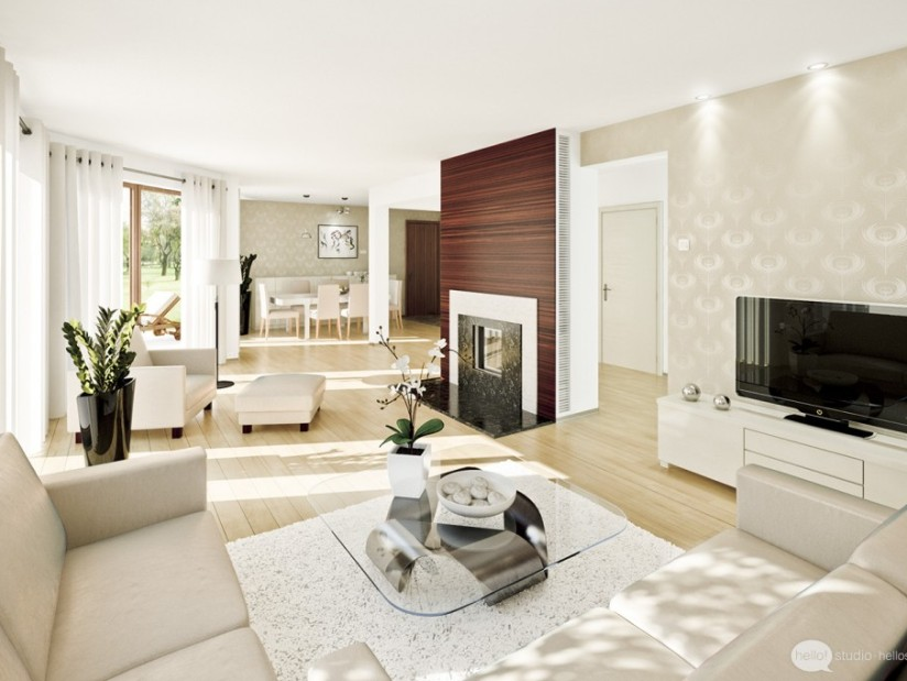 Lovely Living Room Interior Idea Picture