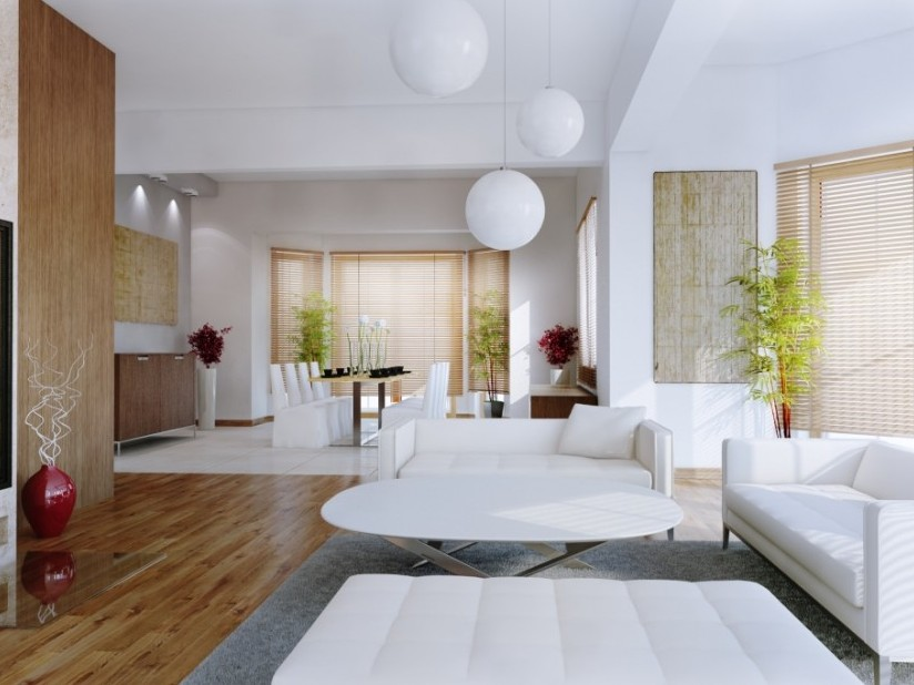 Minimalist White Lovely Living Room Idea