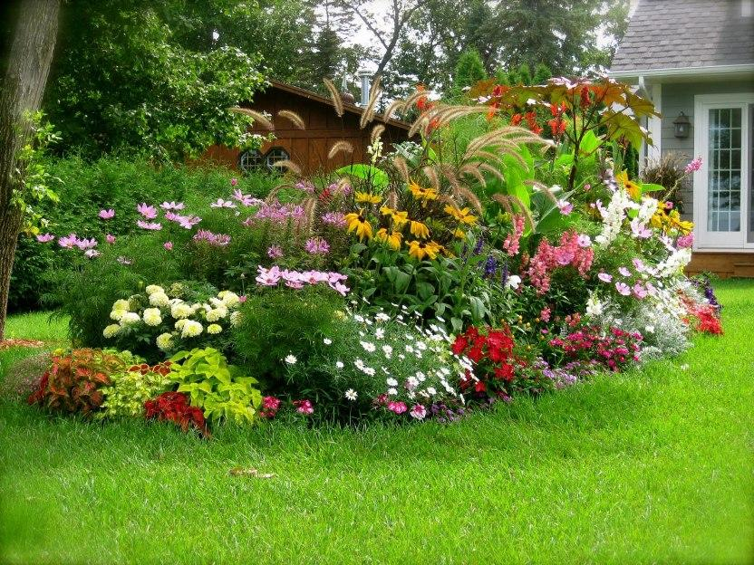 Colorful Flower Idea For Home Garden Layout