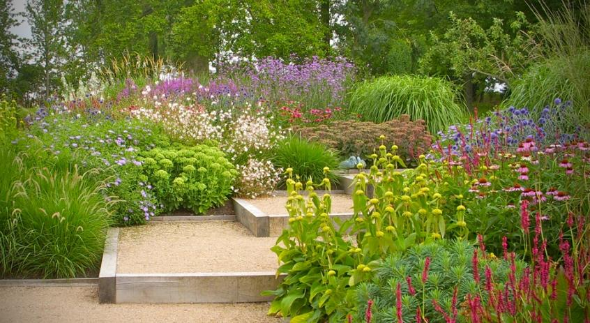Flower Choice Idea For Garden Layout