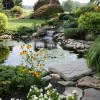Nice Pond Layout For Modern Garden Image