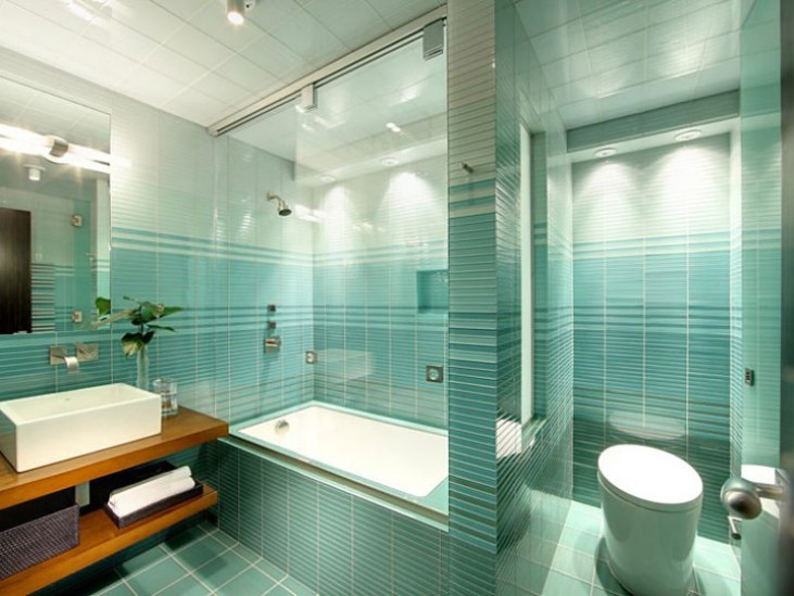 Tosca Theme Idea For Modern Home Bathroom