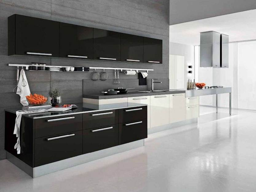 Elegant Black White Kitchen Color
