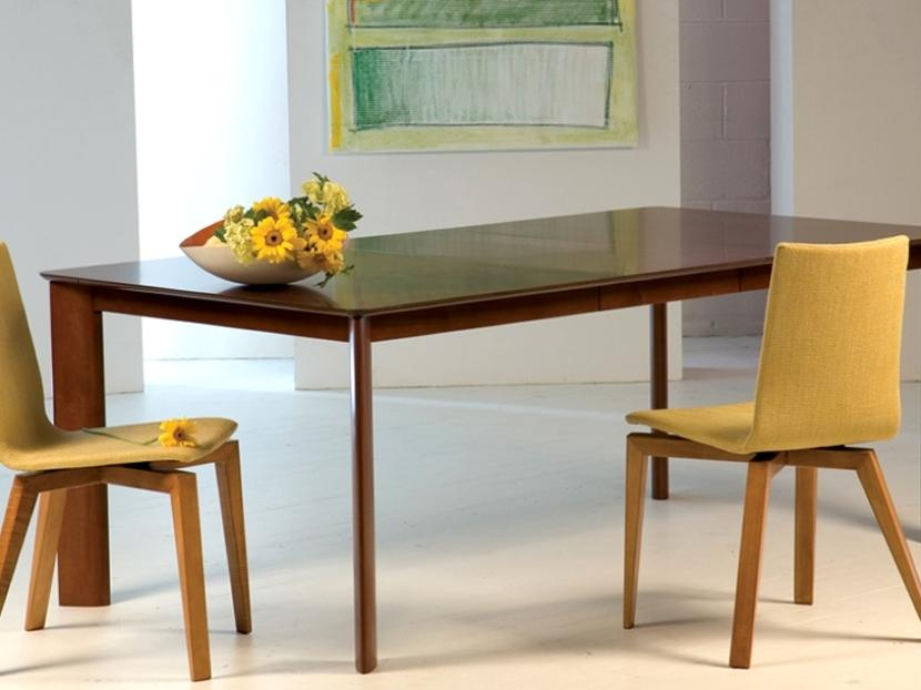 Minimalist Dining Table For Modern Home