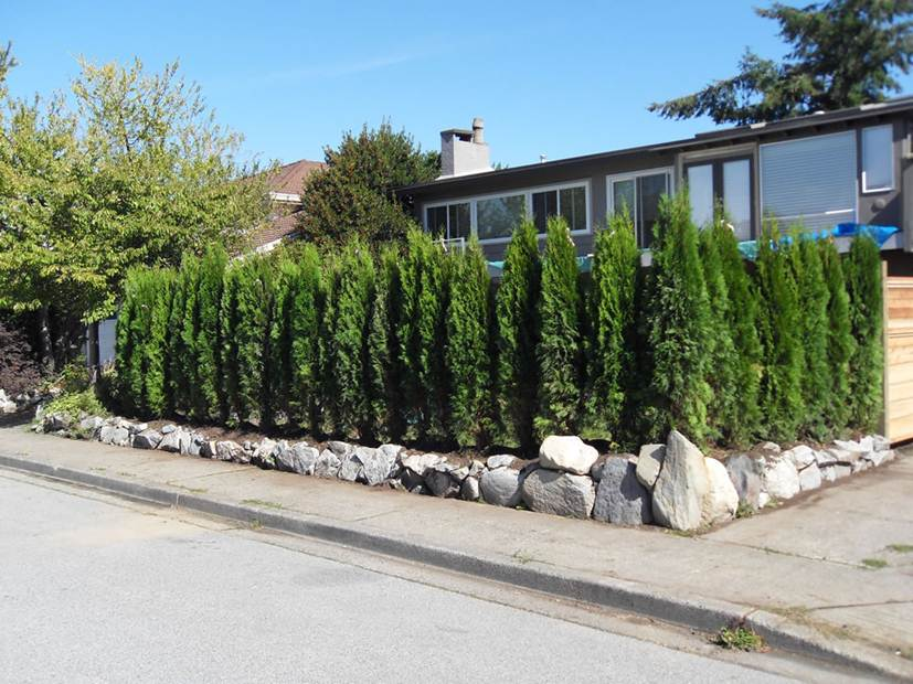 Nice Cedar Fence Design For Home