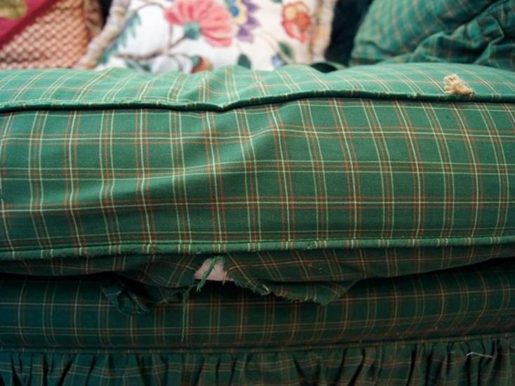 Right Tips to Fix Damaged Old Sofa