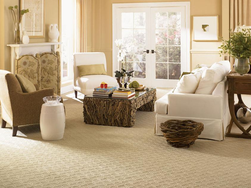 Simple Carpet Design For Home Flooring