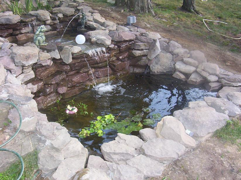 Simple Fish Pond With Natural Stone Decor