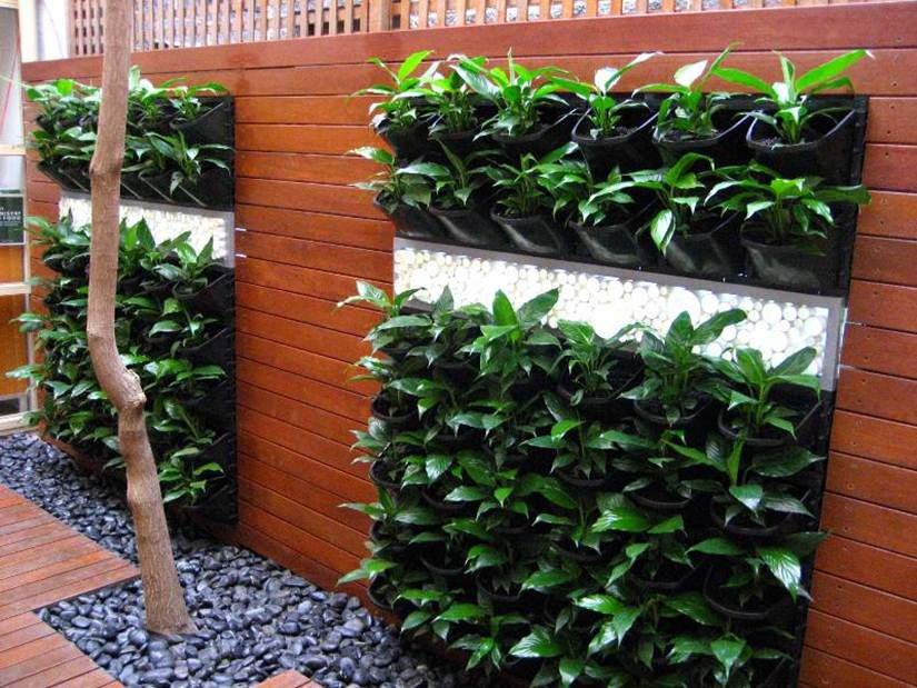 Build Vertical Garden In Small Space Tips