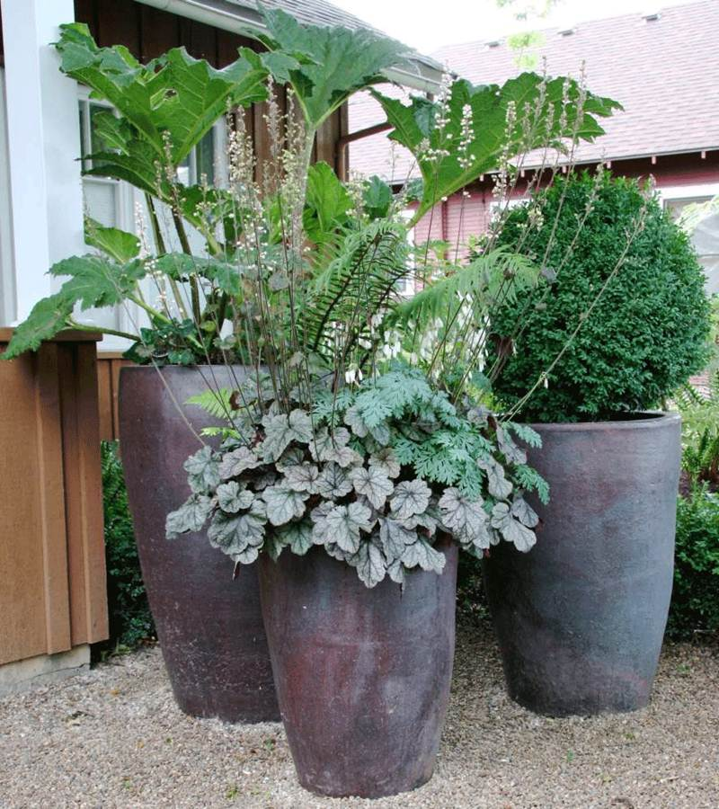 How To Choose Nice Pot Design