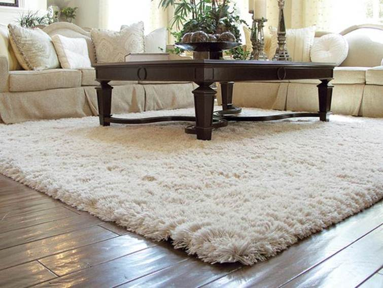 Top White Carpet For Living Room