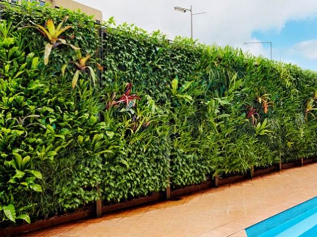 Vertical Garden For Home Fence Design