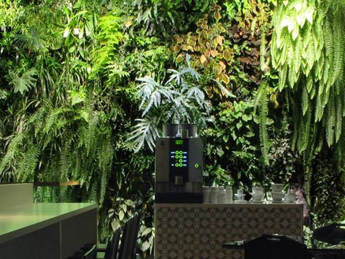 Vertical Garden Plants Selection Idea