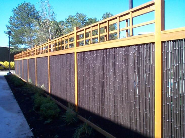 Genial Bamboo Fence Design For Modern House