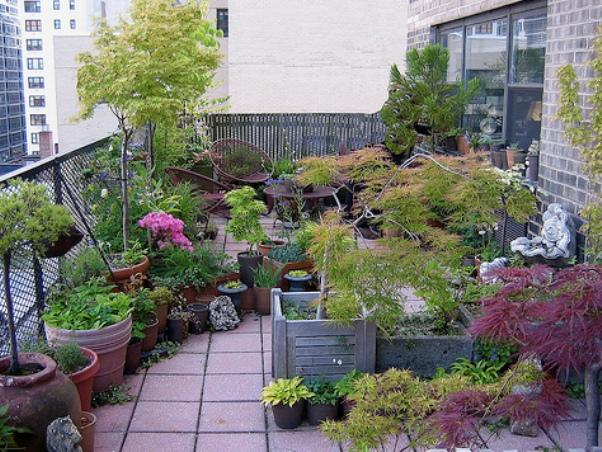 Beautiful Terrace Garden On The Backyard