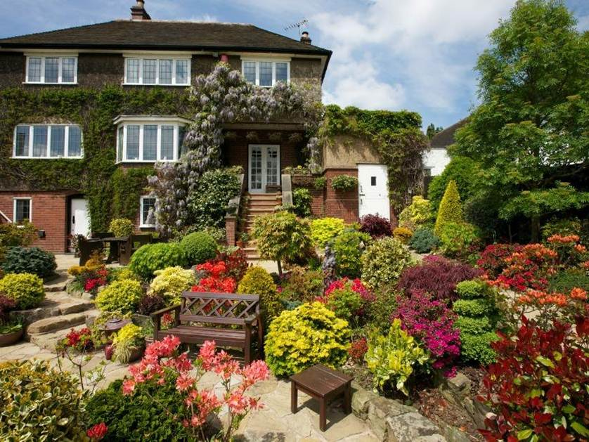 Colorful Garden To Decorate Minimalist House