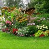 Colorful Home Garden Decorating Ideas