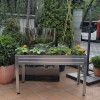 Make Urban Garden On The Table