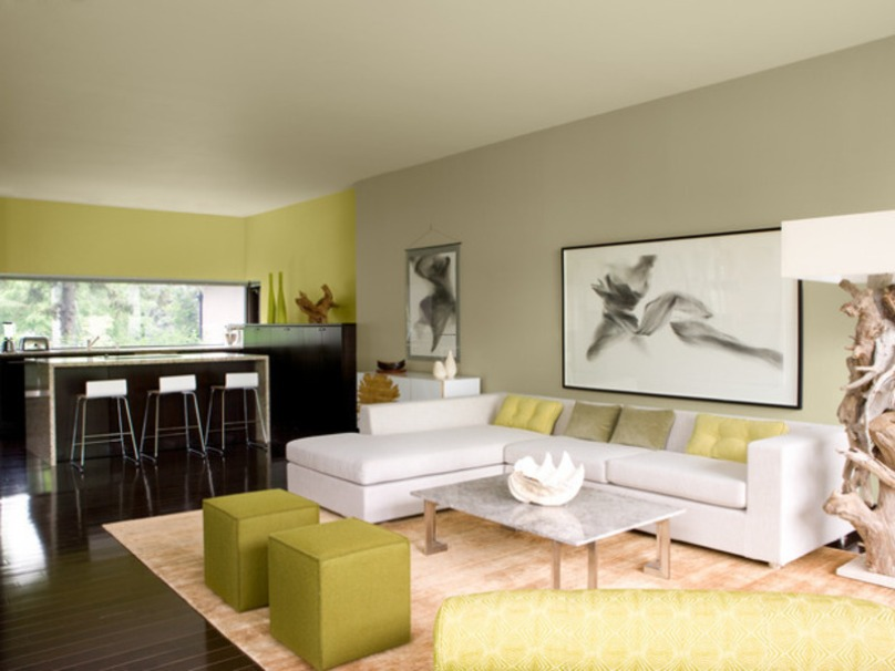 Paint Color For Opem Living Room Design