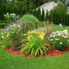 Plants Idea To Decorate Home Garden