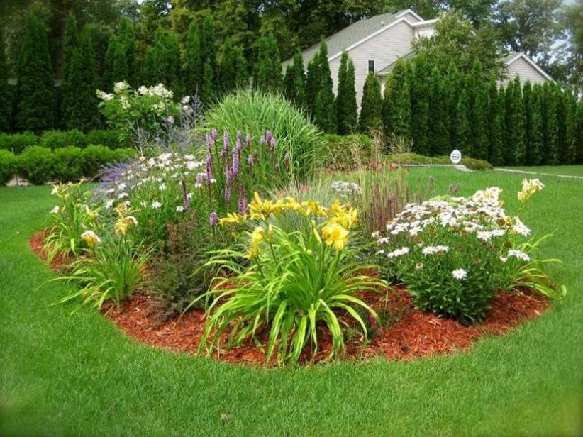 Plants Idea To Decorate Home Garden 2020 Ideas