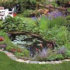 Decorating Idea For Backyard Garden Pond