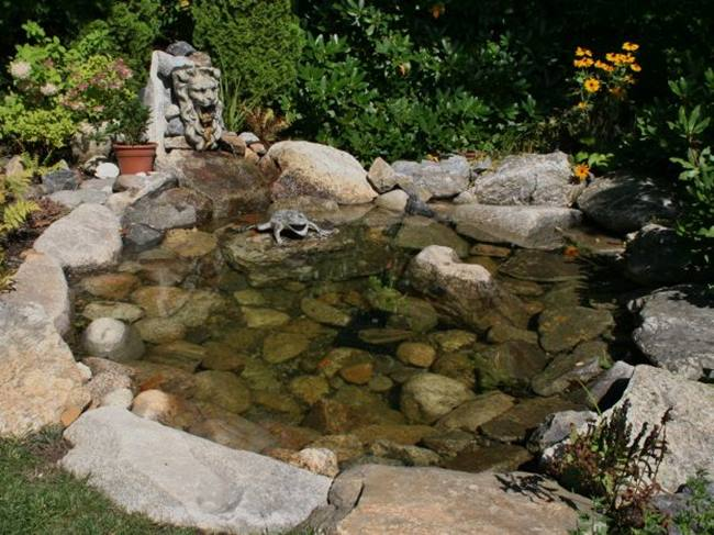 Small fish pond for home garden decoration 4 home ideas for Decorative pond fish