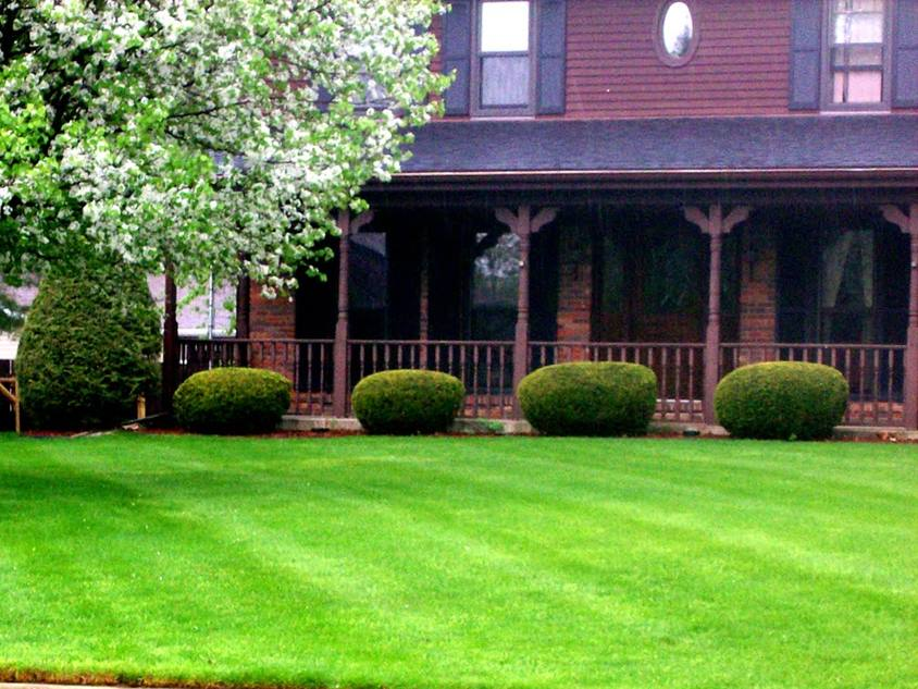 Nice Front Home Garden Grass Idea