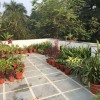 Garden Layout To Beautify Home Terrace