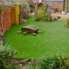 Grass Idea To Make Garden Look Beautiful