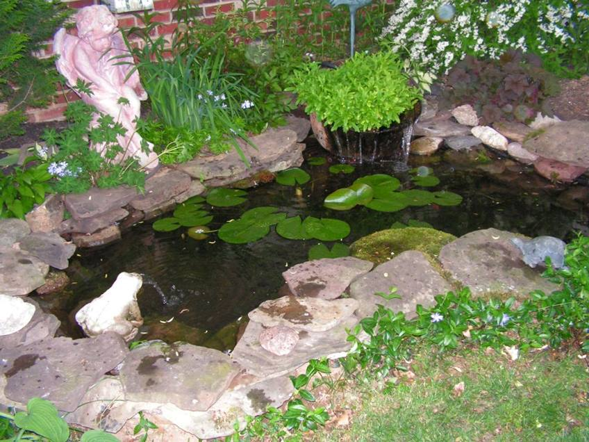 Minimalist pond design for backyard garden 4 home ideas for Decorative fish pond covers