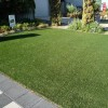 NIce Grass Idea For Urban Home Garden